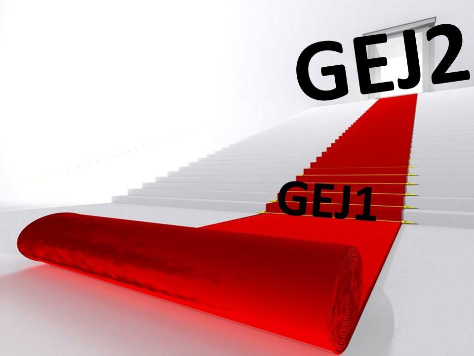 GEJ2 GEJ1