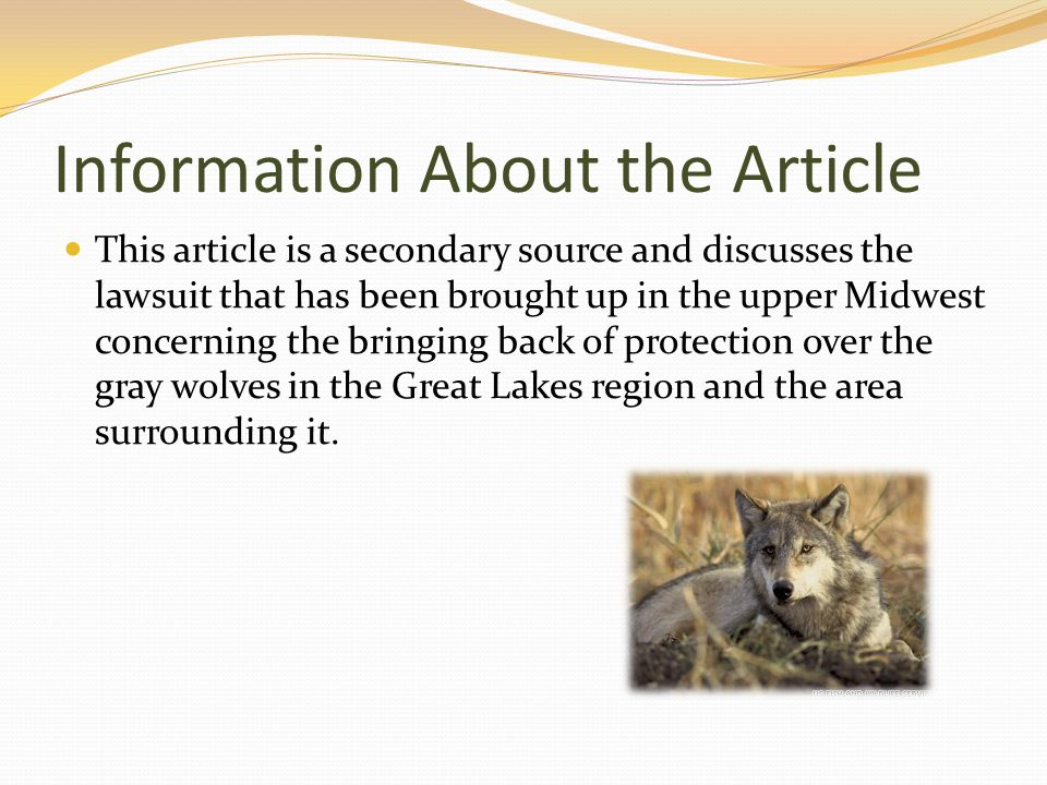 Information About the Article This article is a secondary source and discusses the lawsuit that has been brought up in the upper Midwest concerning the bringing back of protection over the gray wolves in the Great Lakes region and the area surrounding it.
