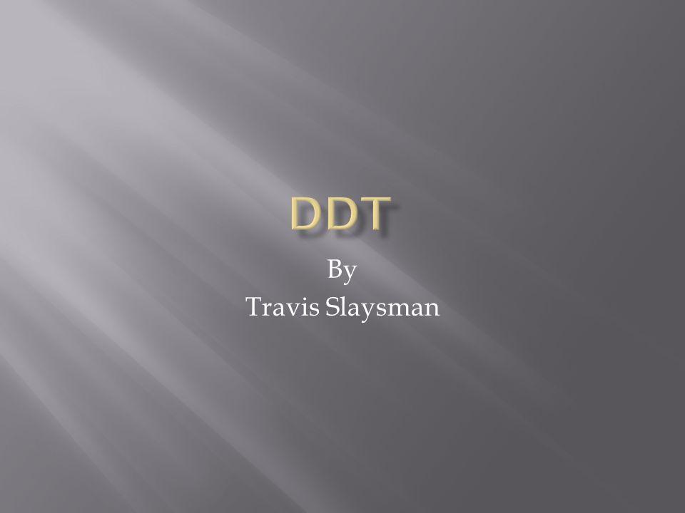By Travis Slaysman