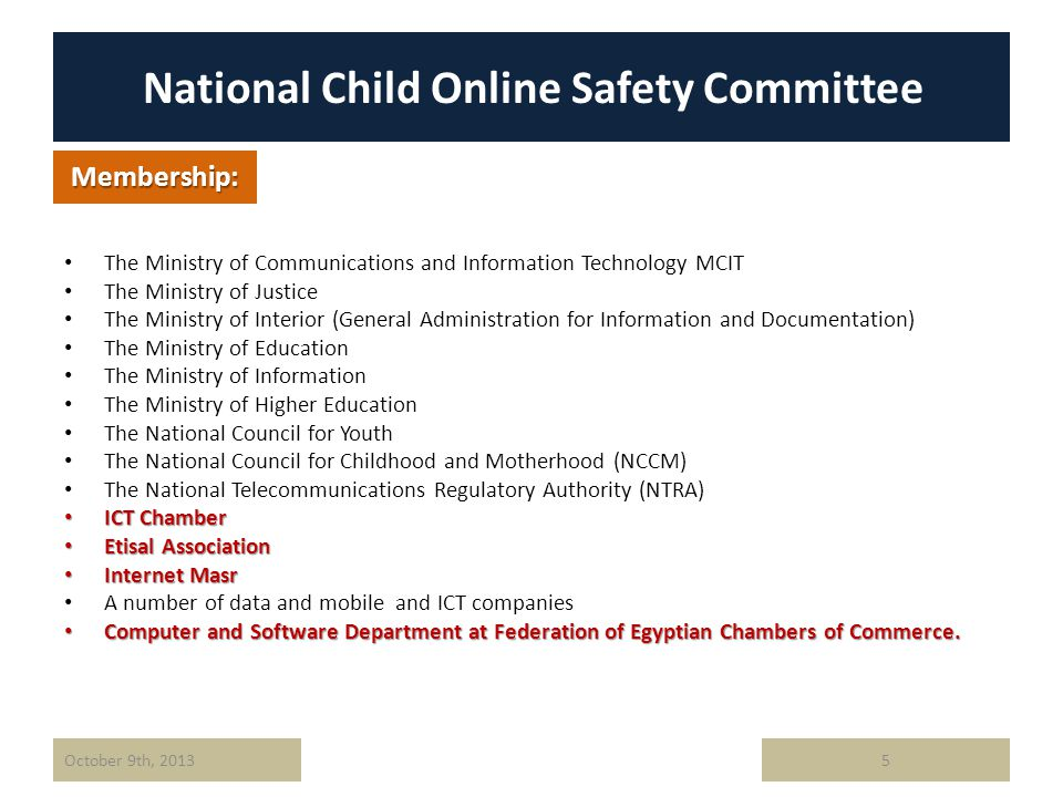 National Child Online Safety Committee The Ministry of Communications and Information Technology MCIT The Ministry of Justice The Ministry of Interior (General Administration for Information and Documentation) The Ministry of Education The Ministry of Information The Ministry of Higher Education The National Council for Youth The National Council for Childhood and Motherhood (NCCM) The National Telecommunications Regulatory Authority (NTRA) ICT Chamber ICT Chamber Etisal Association Etisal Association Internet Masr Internet Masr A number of data and mobile and ICT companies Computer and Software Department at Federation of Egyptian Chambers of Commerce.