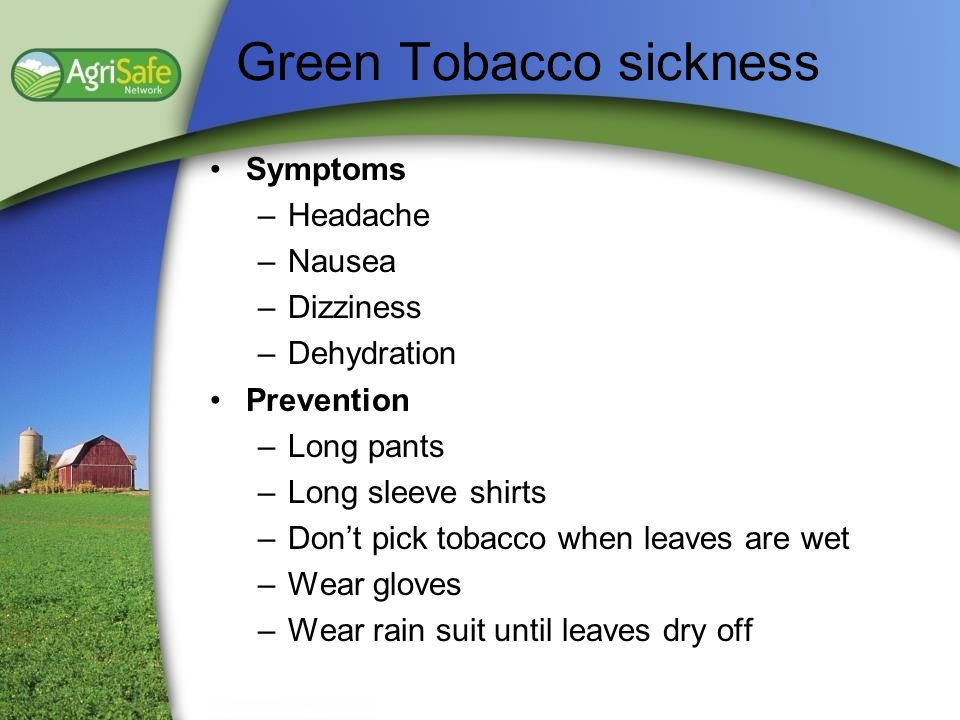 Green Tobacco sickness Symptoms –Headache –Nausea –Dizziness –Dehydration Prevention –Long pants –Long sleeve shirts –Dont pick tobacco when leaves ar