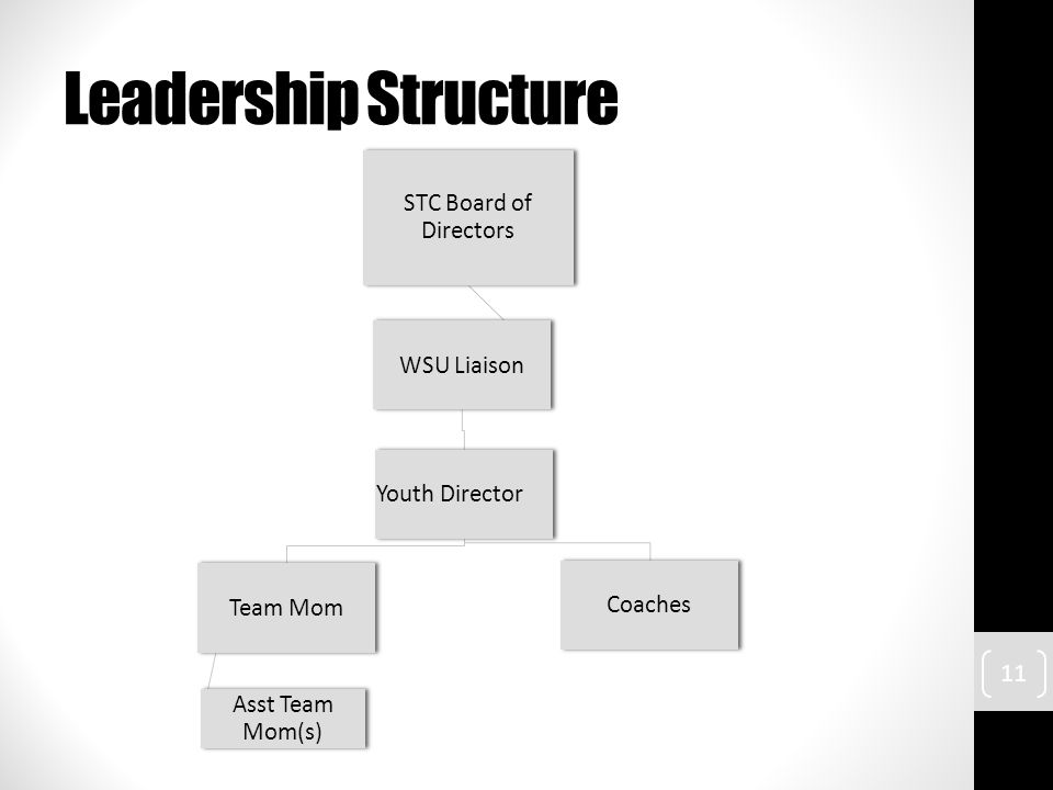 Leadership Structure STC Board of Directors WSU Liaison Youth Director Coaches Team Mom Asst Team Mom(s) 11