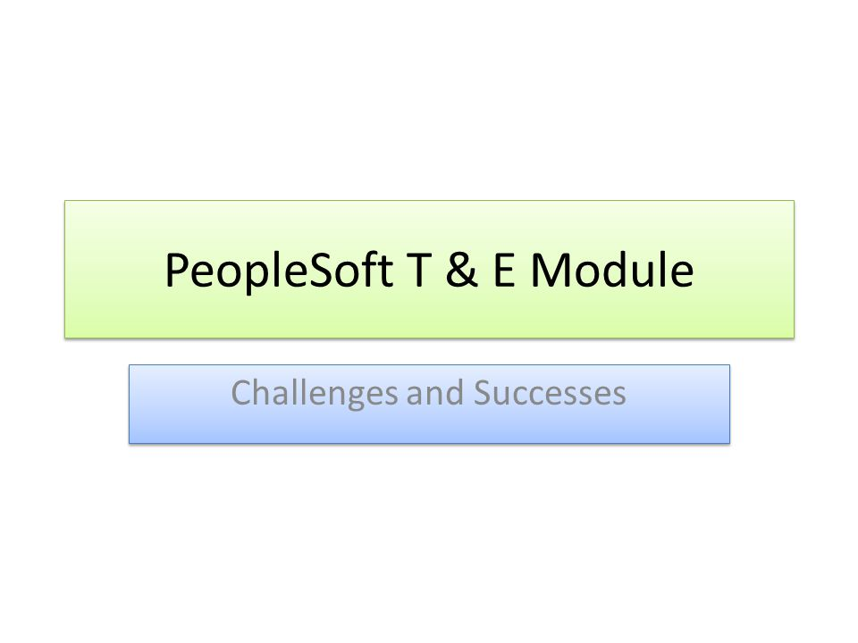 PeopleSoft T & E Module Challenges and Successes
