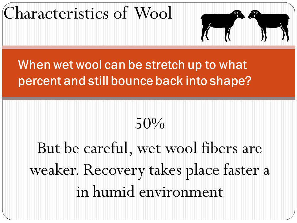 When wet wool can be stretch up to what percent and still bounce back into shape.