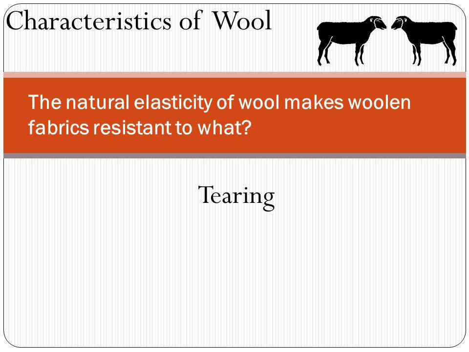 Characteristics of Wool The natural elasticity of wool makes woolen fabrics resistant to what? Tearing