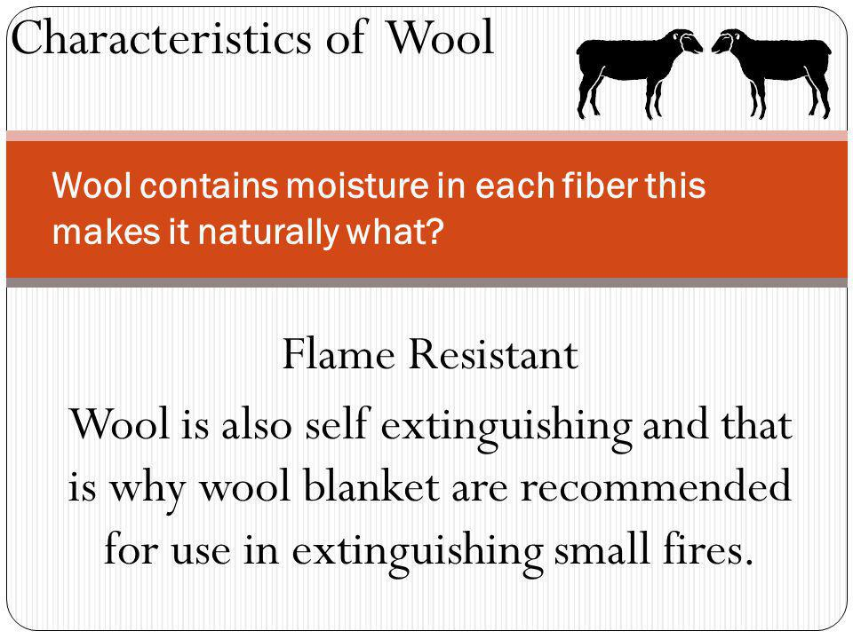 Characteristics of Wool Wool contains moisture in each fiber this makes it naturally what? Flame Resistant Wool is also self extinguishing and that is