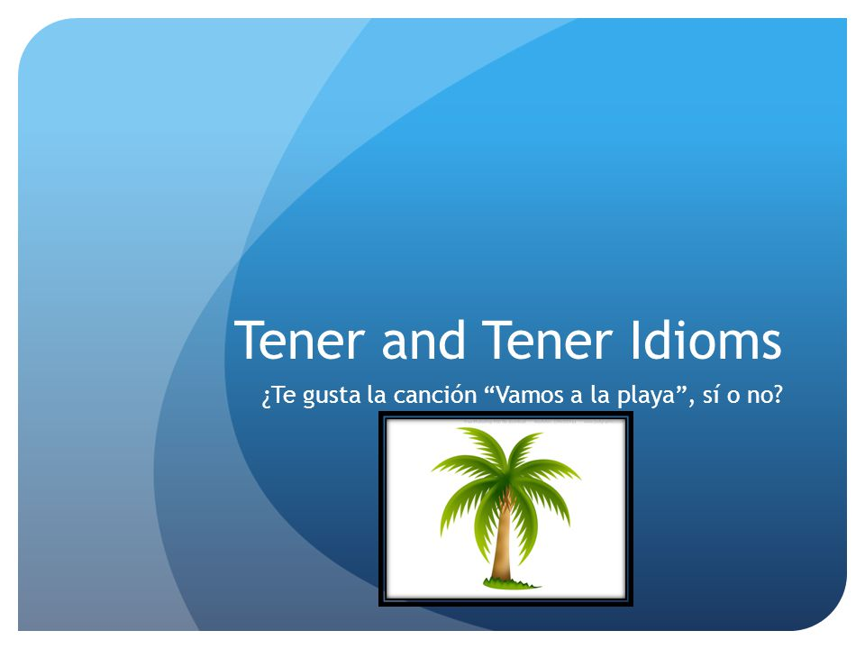 Tener and Tener Idioms ¿Te gusta la canción Vamos a la playa, sí o no