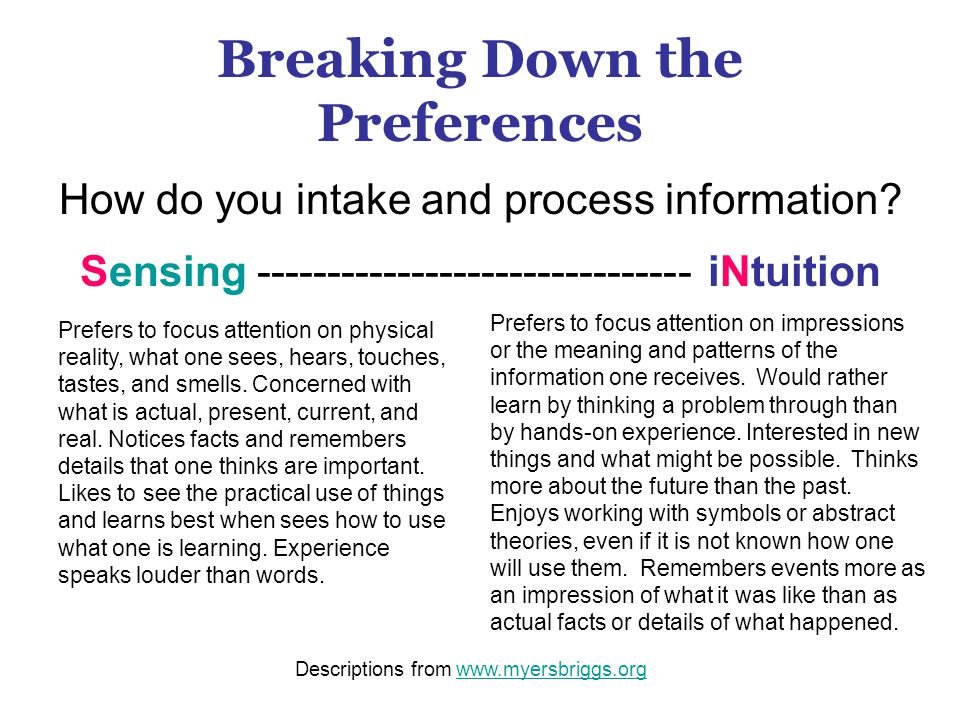 Breaking Down the Preferences How do you intake and process information.