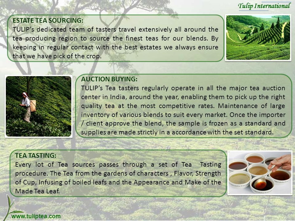 www.tuliptea.com ESTATE TEA SOURCING: TULIPs dedicated team of tasters travel extensively all around the tea producing region to source the finest teas for our blends.