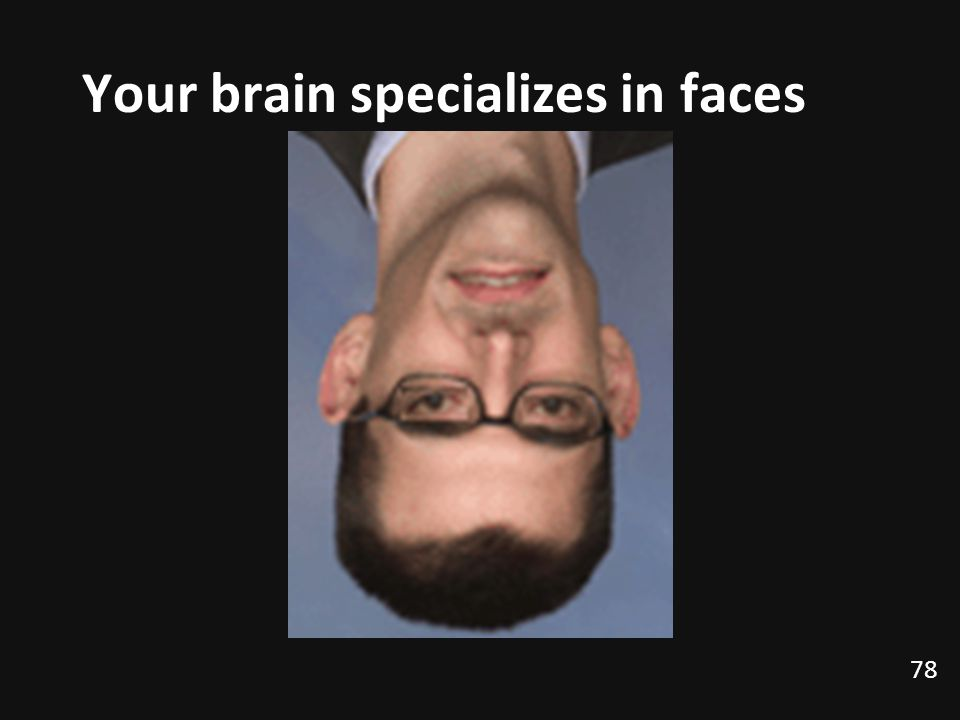 78 Your brain specializes in faces