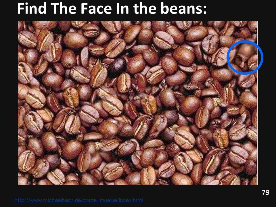 79 Find The Face In the beans: http:// www.michaelbach.de/ot/sze_muelue/index.html