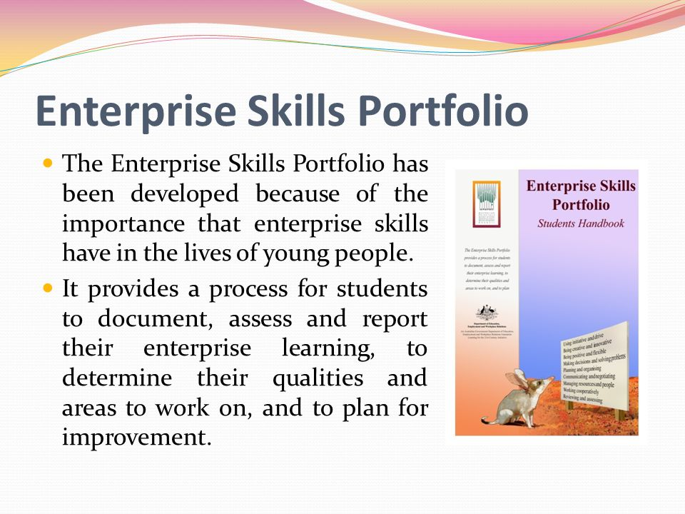 Enterprise Skills Portfolio The Enterprise Skills Portfolio has been developed because of the importance that enterprise skills have in the lives of young people.