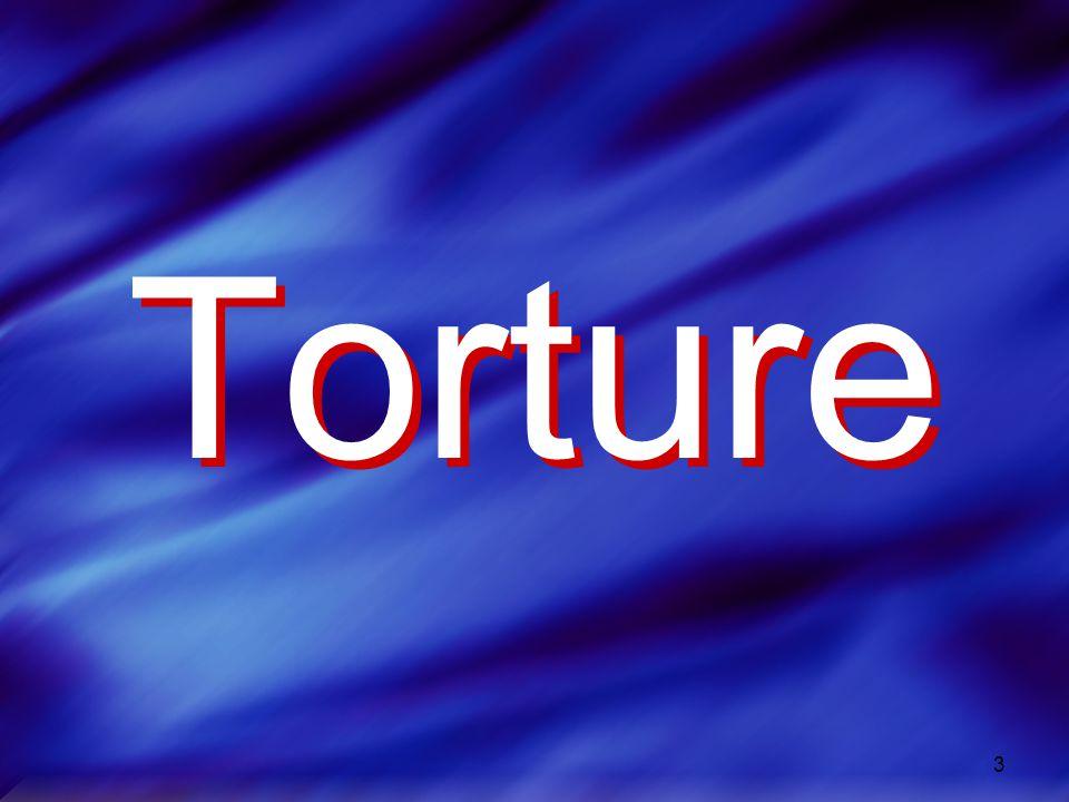 3 Torture