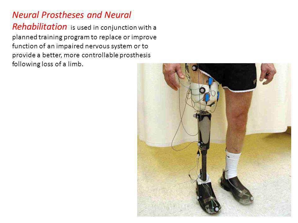 Neural Prostheses and Neural Rehabilitation is used in conjunction with a planned training program to replace or improve function of an impaired nervous system or to provide a better, more controllable prosthesis following loss of a limb.