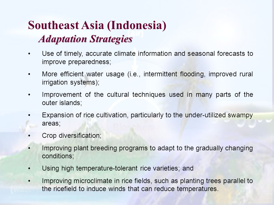 Southeast Asia (Indonesia) Adaptation Strategies Use of timely, accurate climate information and seasonal forecasts to improve preparedness; More efficient water usage (i.e., intermittent flooding, improved rural irrigation systems); Improvement of the cultural techniques used in many parts of the outer islands; Expansion of rice cultivation, particularly to the under-utilized swampy areas; Crop diversification; Improving plant breeding programs to adapt to the gradually changing conditions; Using high temperature-tolerant rice varieties; and Improving microclimate in rice fields, such as planting trees parallel to the ricefield to induce winds that can reduce temperatures.