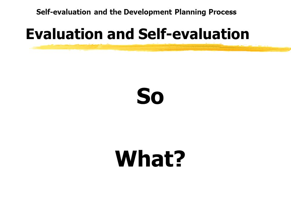 Self-evaluation and the Development Planning Process Evaluation and Self-evaluation So What