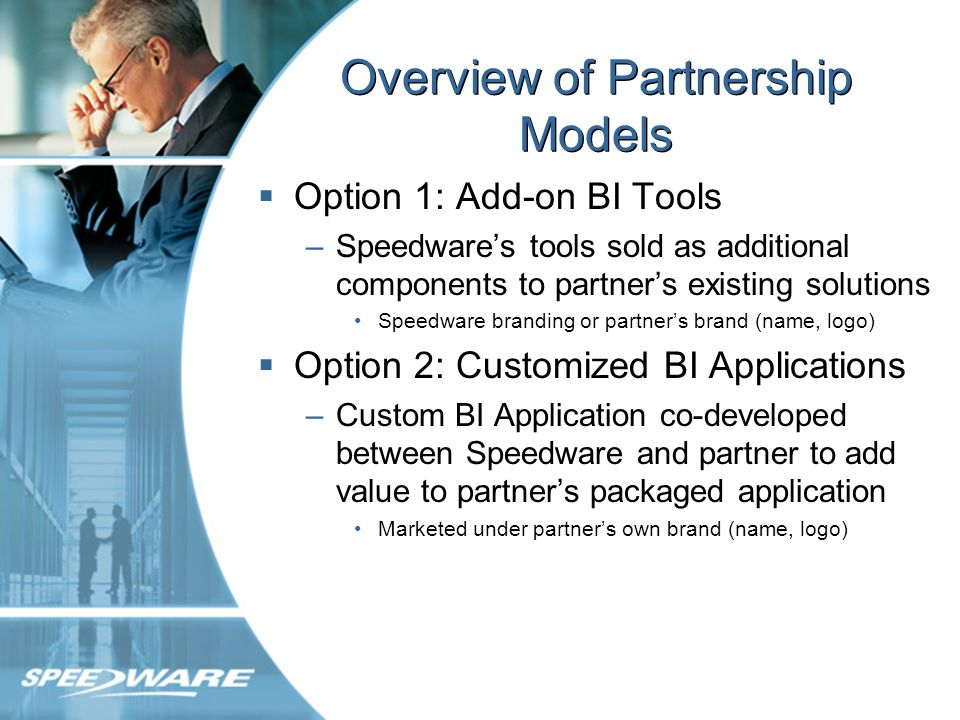 Option 1: Add-on BI Tools Speedwares technologies sold as add-on component tools –Tool marketed, sold and supported directly by partner Partners branding (name, logo) –Customer builds own solution using tool