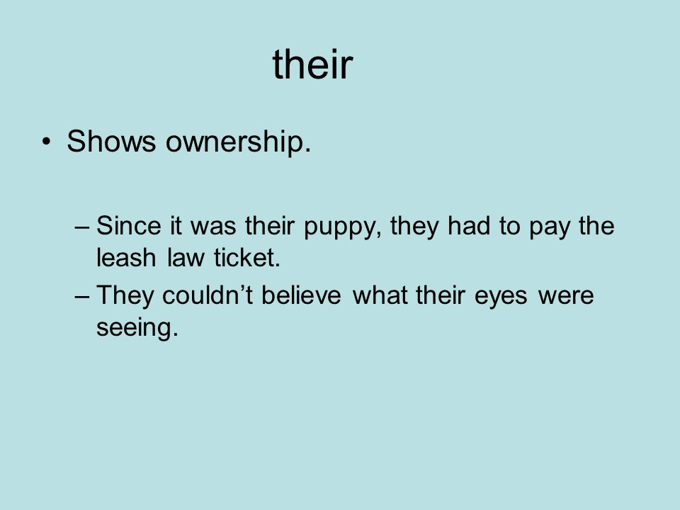 their Shows ownership.–Since it was their puppy, they had to pay the leash law ticket.