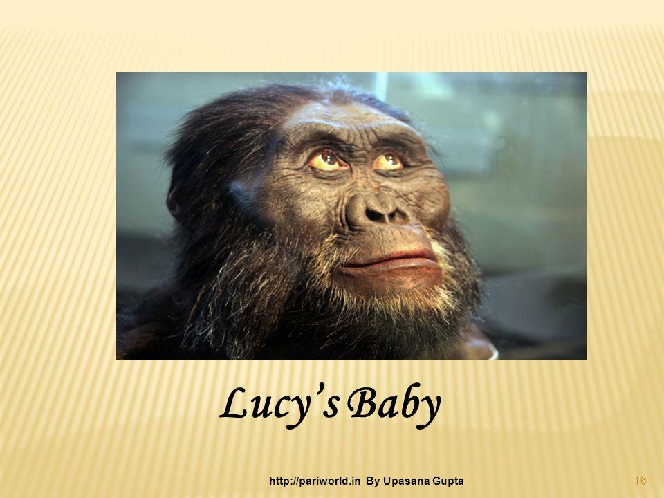 Lucys Baby 16 http://pariworld.in By Upasana Gupta