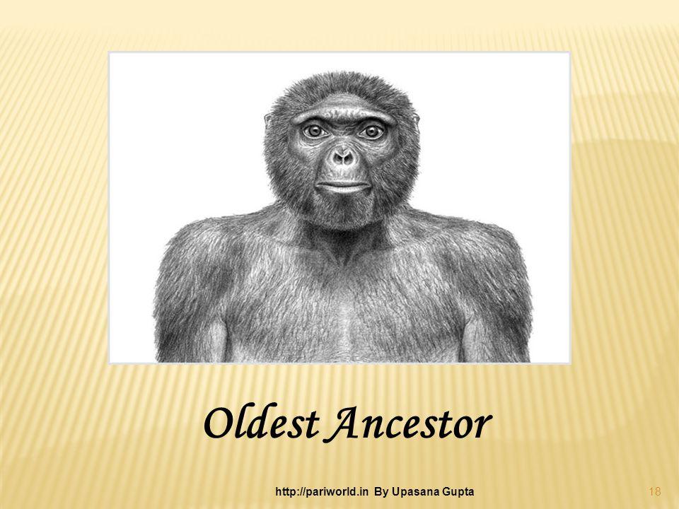 Oldest Ancestor 18 http://pariworld.in By Upasana Gupta