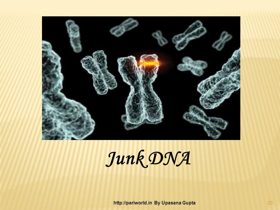 Junk DNA 20 http://pariworld.in By Upasana Gupta
