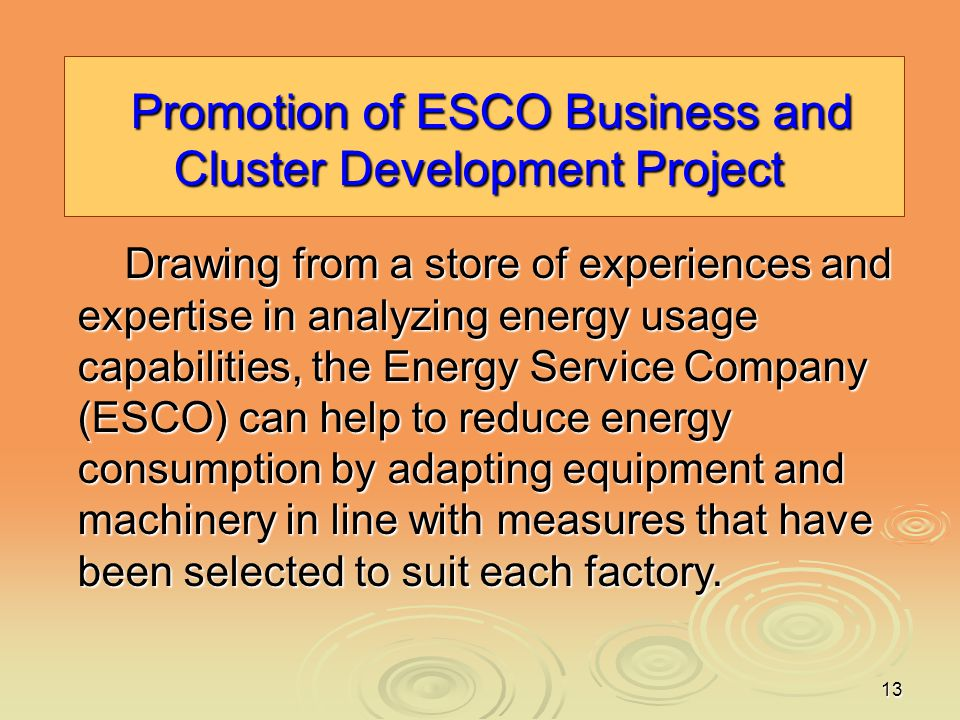 13 Promotion of ESCO Business and Cluster Development Project Promotion of ESCO Business and Cluster Development Project Drawing from a store of exper