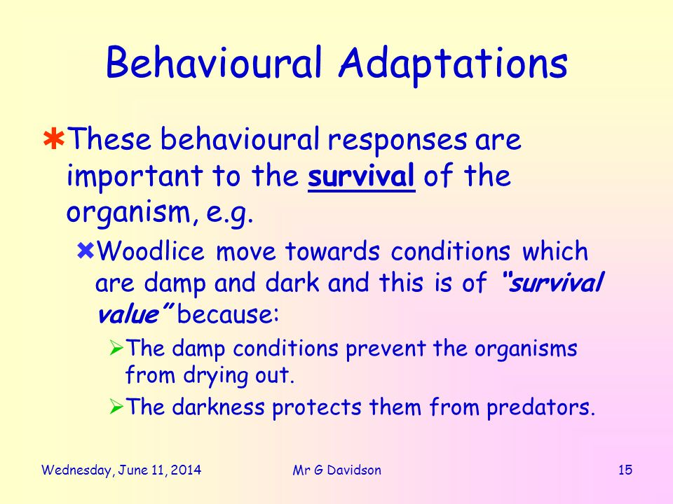 Wednesday, June 11, Mr G Davidson Behavioural Adaptations These behavioural responses are important to the survival of the organism, e.g.