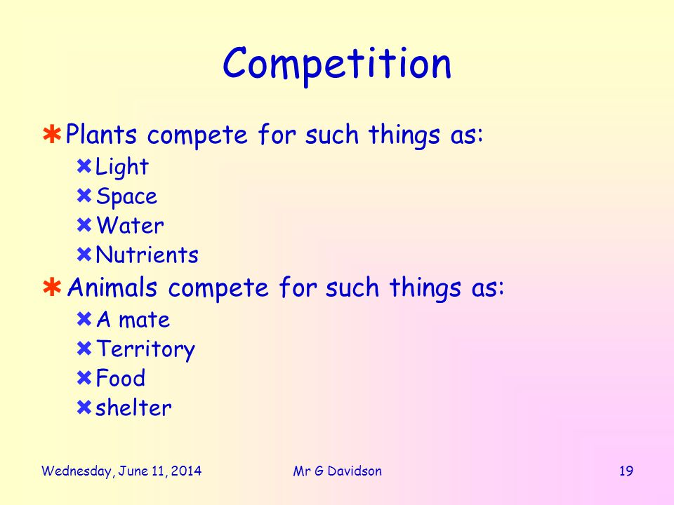 Wednesday, June 11, Mr G Davidson Competition Plants compete for such things as: Light Space Water Nutrients Animals compete for such things as: A mate Territory Food shelter