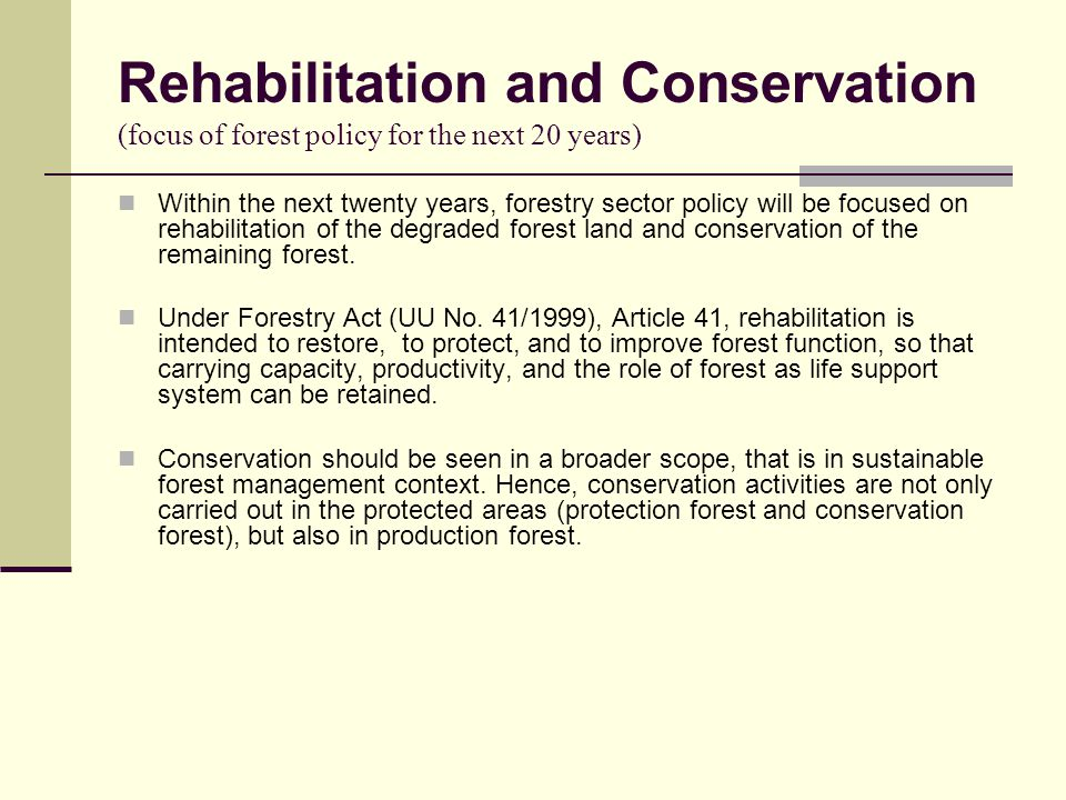 Rehabilitation and Conservation (focus of forest policy for the next 20 years) Within the next twenty years, forestry sector policy will be focused on