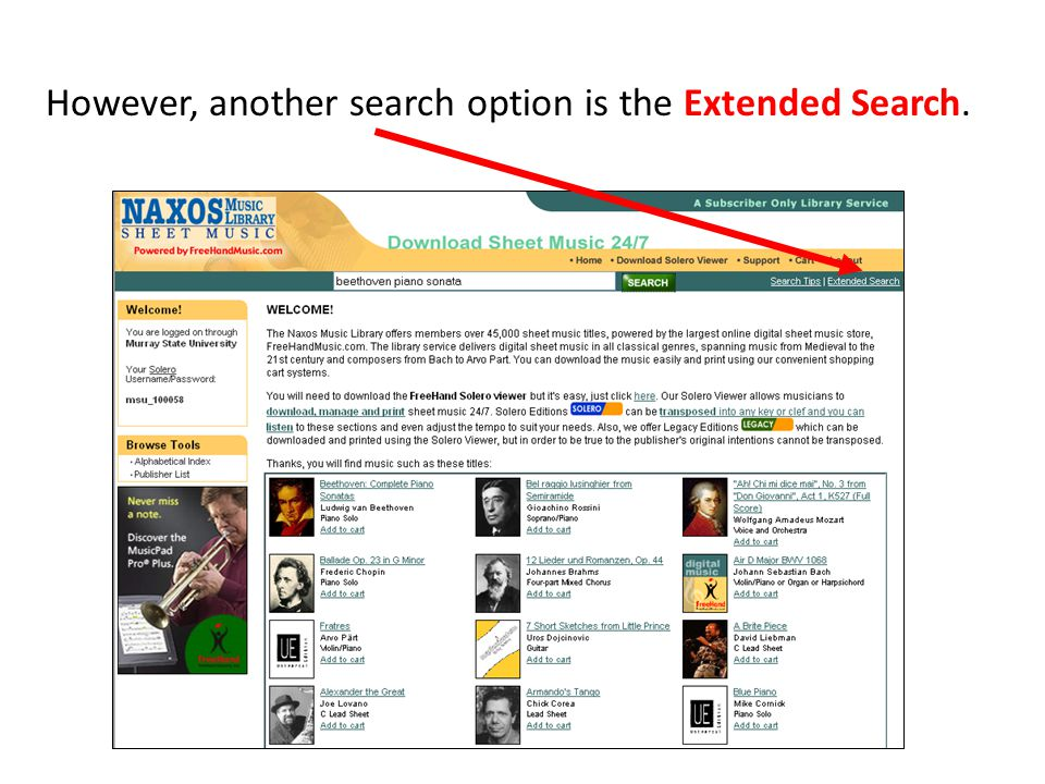 However, another search option is the Extended Search.
