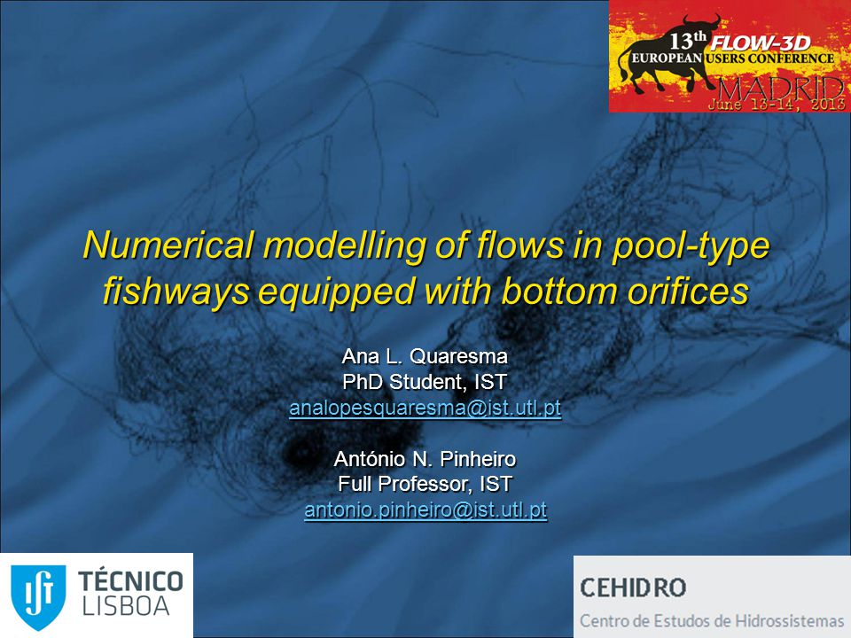 Numerical modelling of flows in pool-type fishways equipped with bottom orifices Ana Quaresma; António Pinheiro Calibration - Approach to steady state 11