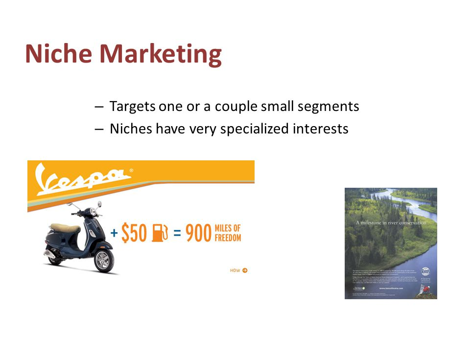Niche Marketing – Targets one or a couple small segments – Niches have very specialized interests