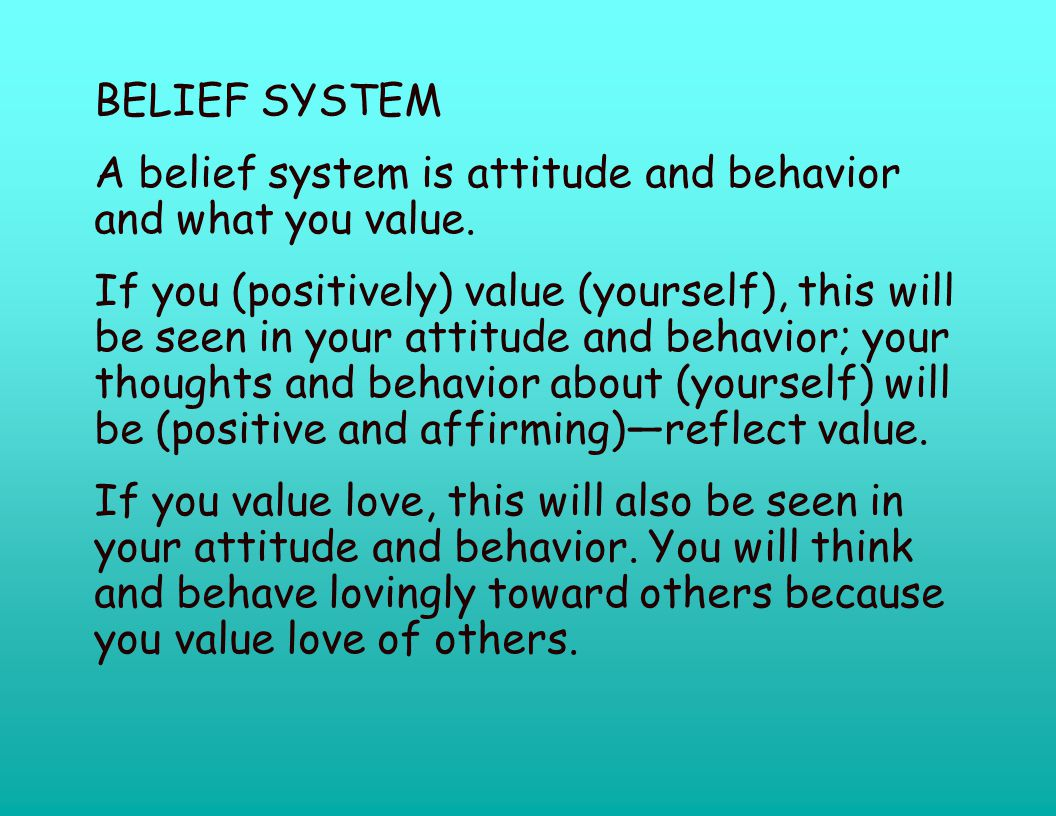BELIEF SYSTEM A belief system is attitude and behavior and what you value.