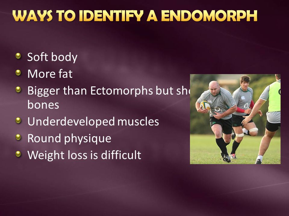 Soft body More fat Bigger than Ectomorphs but shorter bones Underdeveloped muscles Round physique Weight loss is difficult