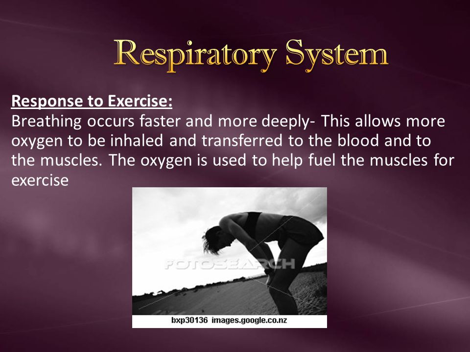 THE anaerobic lactic acid SYSTEM This energy system is for short term activity e.g.