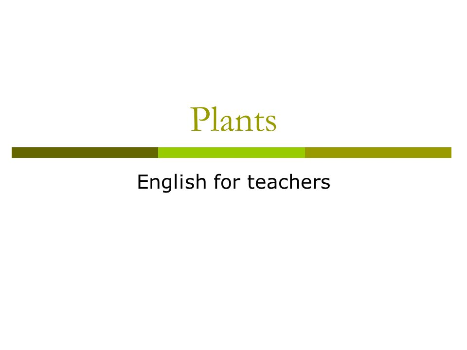 Plants English for teachers