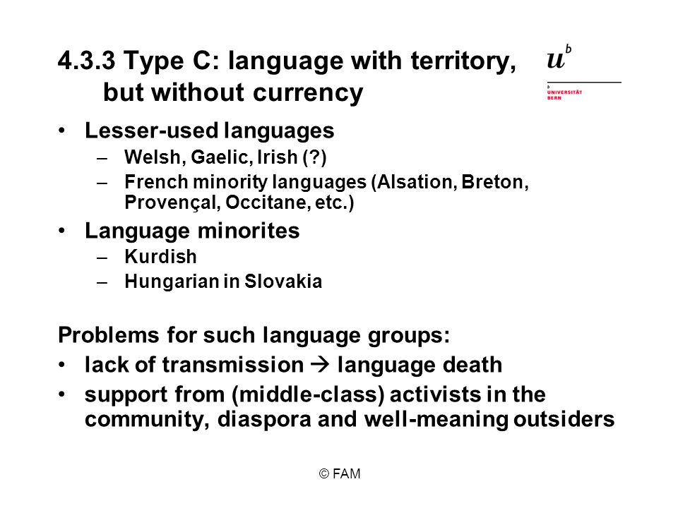 © FAM 4.3.3 Type C: language with territory, but without currency Lesser-used languages –Welsh, Gaelic, Irish (?) –French minority languages (Alsation, Breton, Provençal, Occitane, etc.) Language minorites –Kurdish –Hungarian in Slovakia Problems for such language groups: lack of transmission language death support from (middle-class) activists in the community, diaspora and well-meaning outsiders