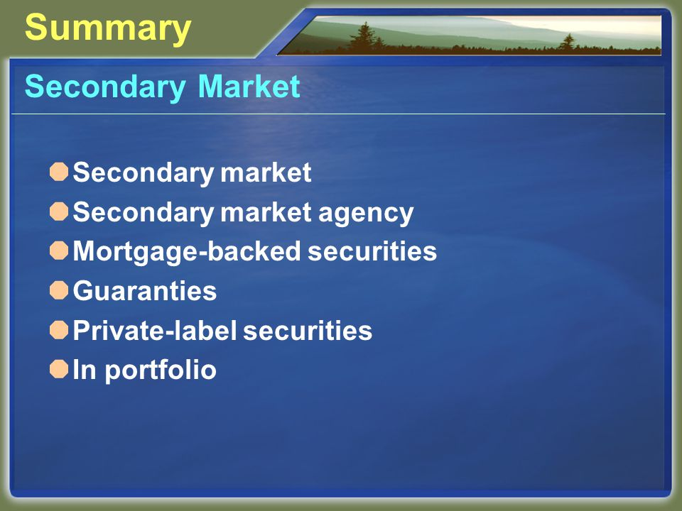 Summary Secondary Market Secondary market Secondary market agency Mortgage-backed securities Guaranties Private-label securities In portfolio