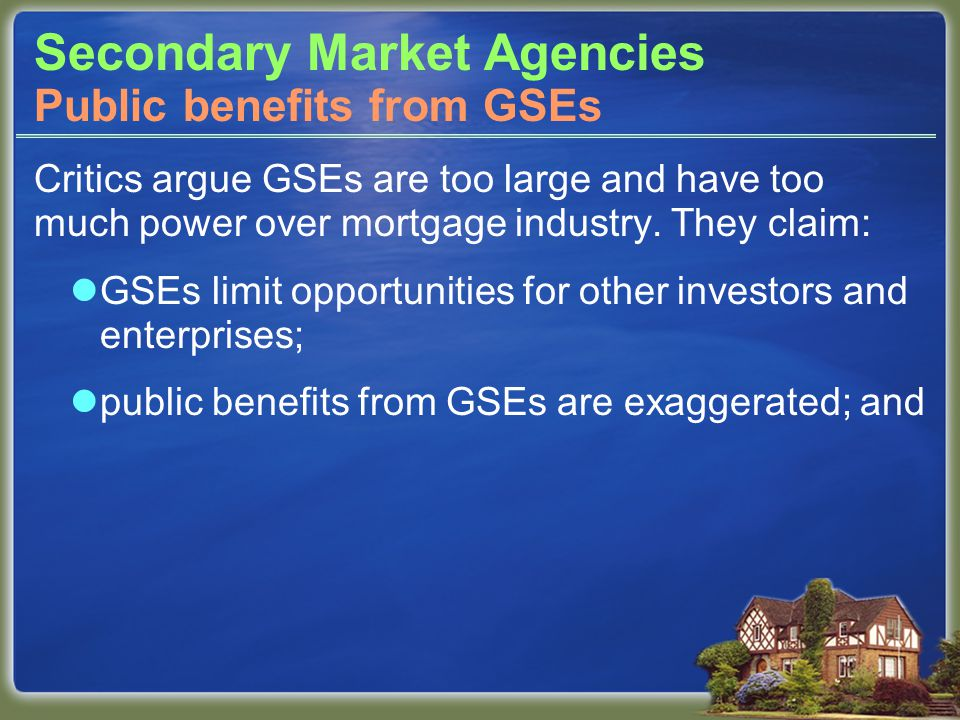 Secondary Market Agencies Critics argue GSEs are too large and have too much power over mortgage industry.