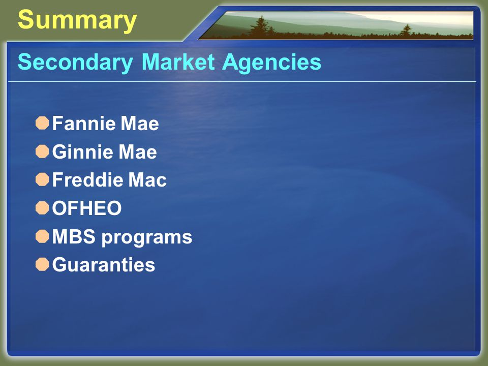 Summary Secondary Market Agencies Fannie Mae Ginnie Mae Freddie Mac OFHEO MBS programs Guaranties