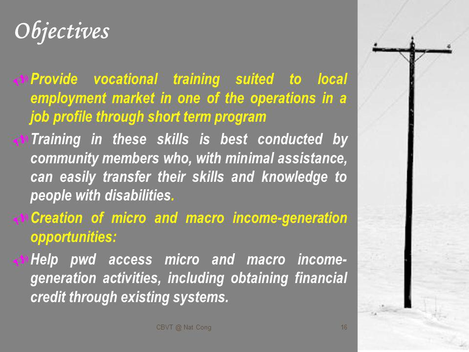 Objectives Provide vocational training suited to local employment market in one of the operations in a job profile through short term program Training in these skills is best conducted by community members who, with minimal assistance, can easily transfer their skills and knowledge to people with disabilities.