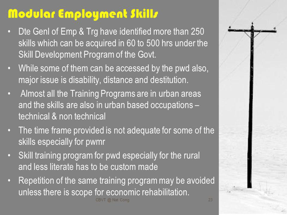 Modular Employment Skills Dte Genl of Emp & Trg have identified more than 250 skills which can be acquired in 60 to 500 hrs under the Skill Development Program of the Govt.