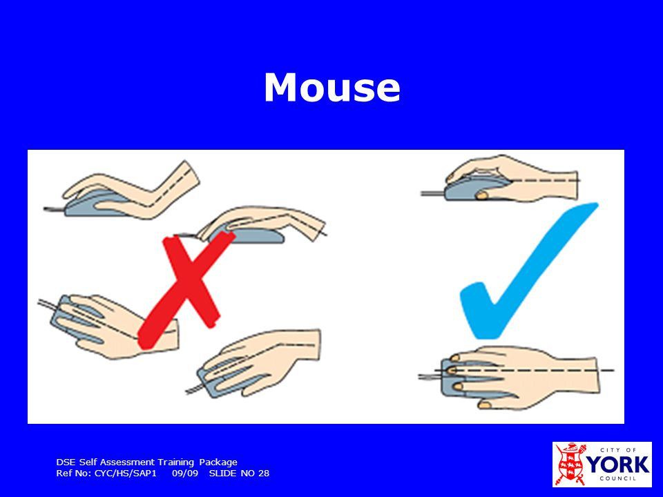 DSE Self Assessment Training Package Ref No: CYC/HS/SAP1 09/09 SLIDE NO 28 Mouse