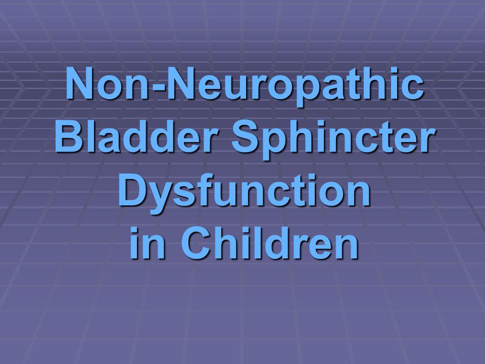 Non-Neuropathic Bladder Sphincter Dysfunction in Children