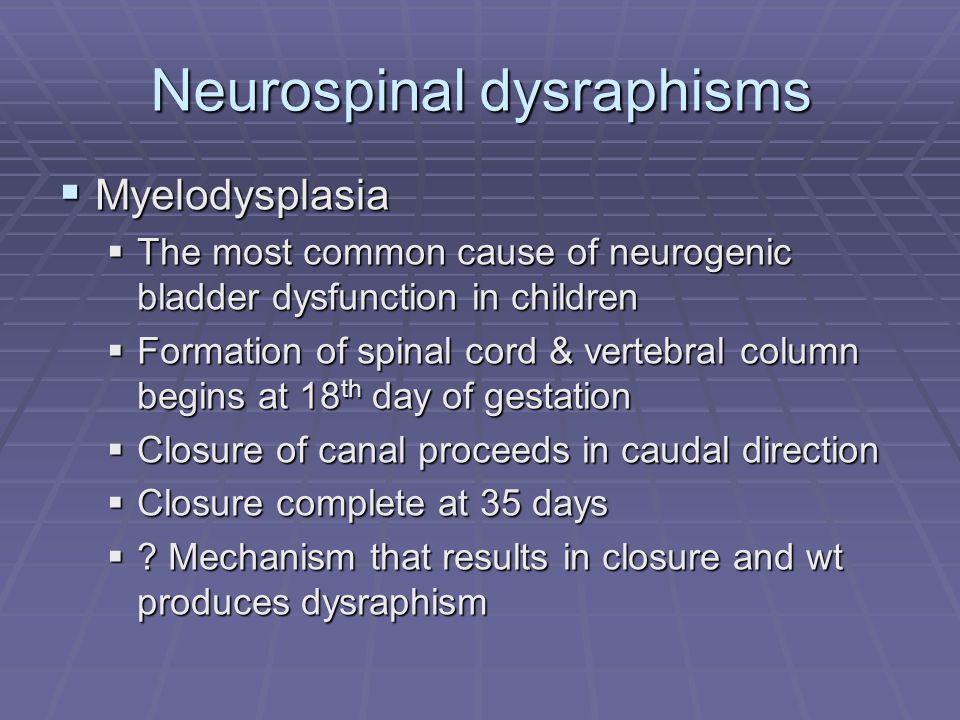 Neurospinal dysraphisms Myelodysplasia Myelodysplasia The most common cause of neurogenic bladder dysfunction in children The most common cause of neu