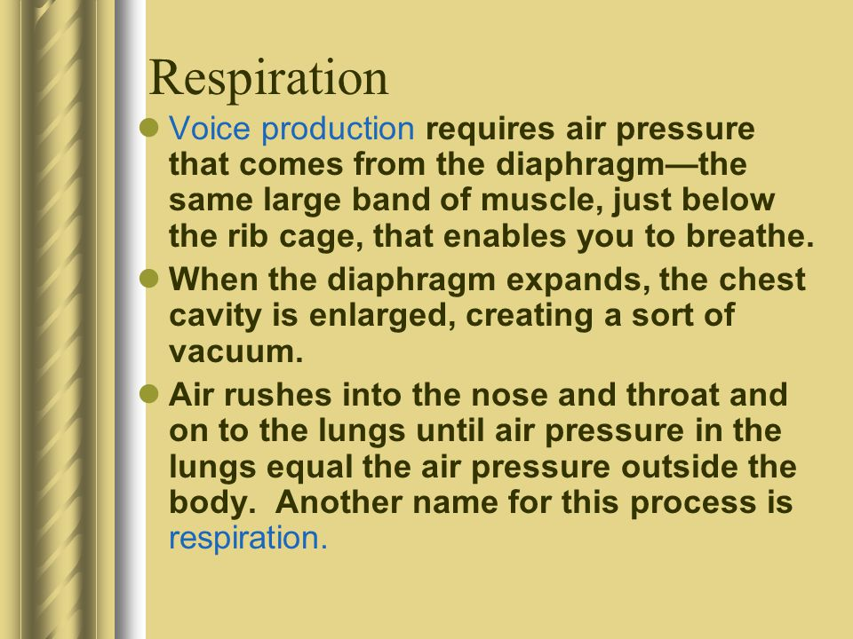 Respiration Voice production requires air pressure that comes from the diaphragmthe same large band of muscle, just below the rib cage, that enables you to breathe.