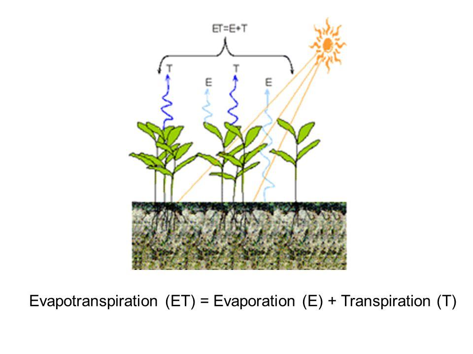 Evapotranspiration (ET) = Evaporation (E) + Transpiration (T)
