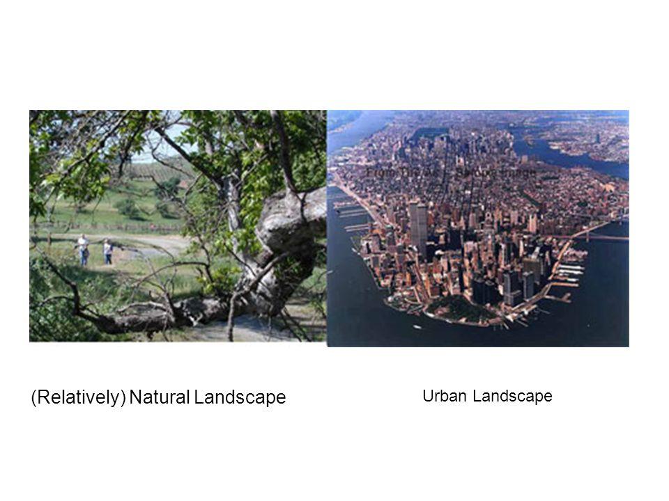 (Relatively) Natural Landscape Urban Landscape
