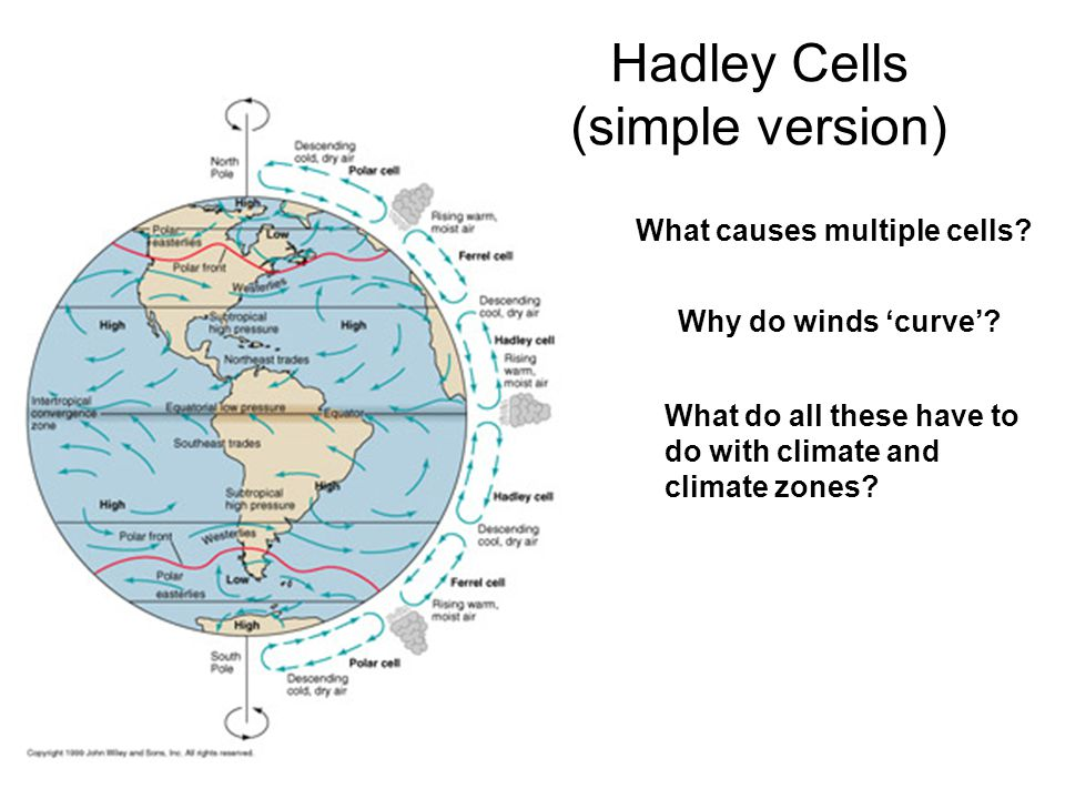 Hadley Cells (simple version) What causes multiple cells.