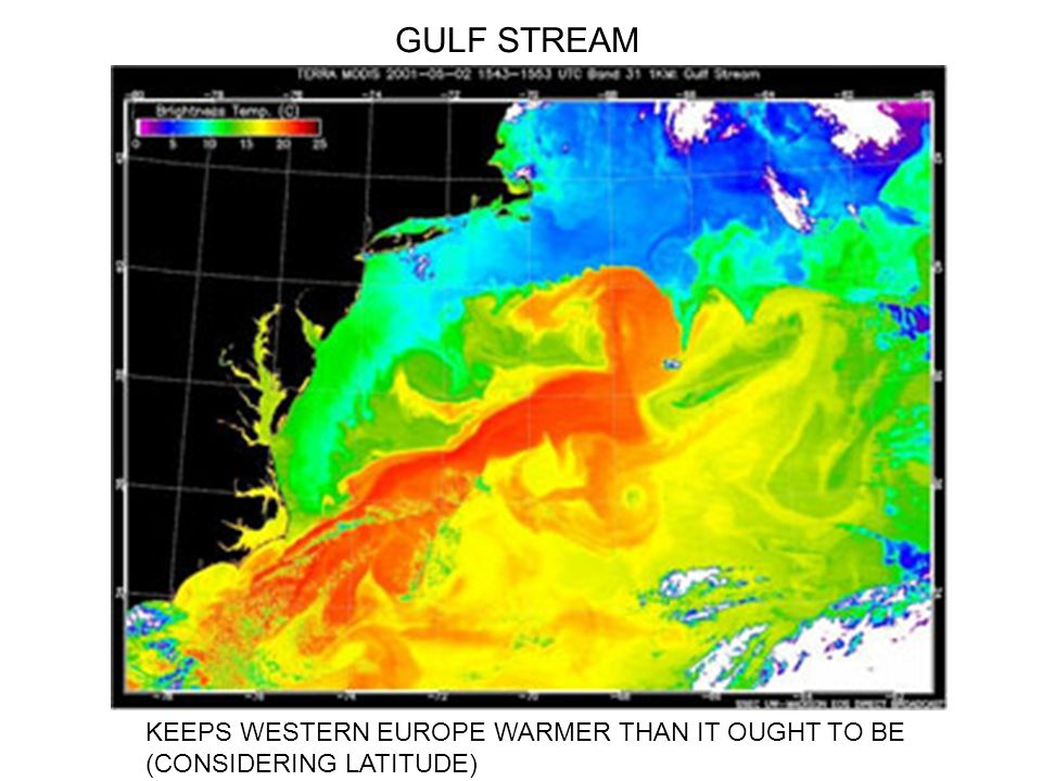 GULF STREAM KEEPS WESTERN EUROPE WARMER THAN IT OUGHT TO BE (CONSIDERING LATITUDE)